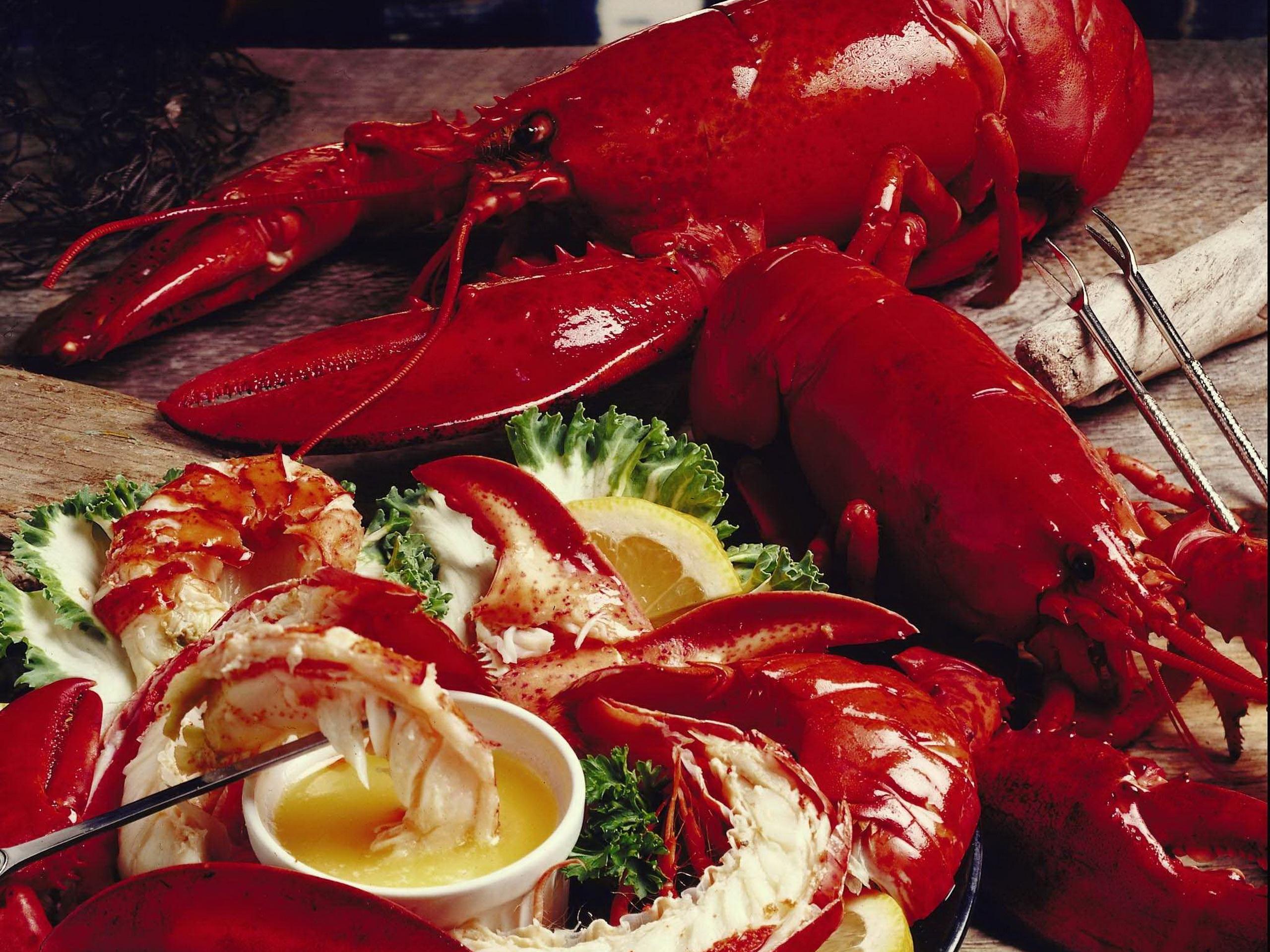 Bildergebnis für best lobster in west palm beach